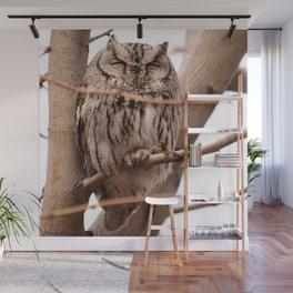 Wild Owl - Ivins, Utah Wall Mural
