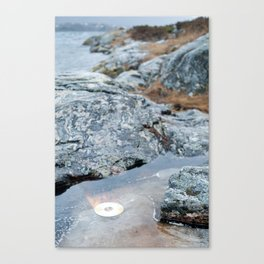 Burning Disc Canvas Print