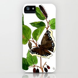 Mourning Cloak Butterfly iPhone Case