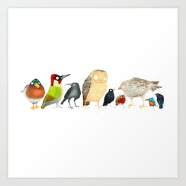 Woodland Bird Collection in white Art Print