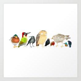Woodland Bird Collection in white Art Print