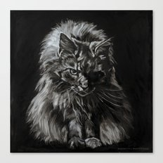 Who's for Dinner? Big Black & White Main Coon Cat Canvas Print