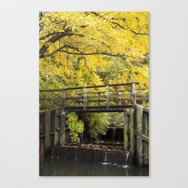 Jersey in Yellow Canvas Print