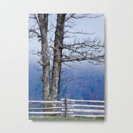 Parkway Tree Metal Print