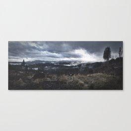 Willapa Hills Fog  Canvas Print
