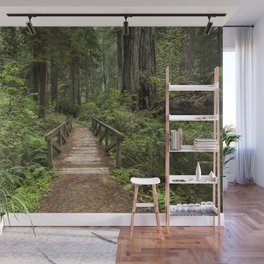 Walk Through Prairie Creek Redwoods State Park Wall Mural