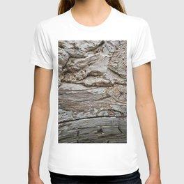 029 T-shirt