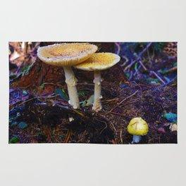 Fungi on Vancouver Island, BC Rug