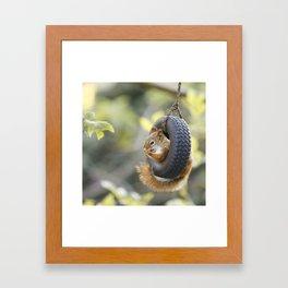 Wheeeee Goes The Squirrel Framed Art Print