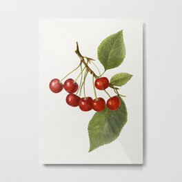 Vintage cherry Metal Print
