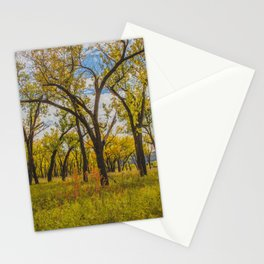 Cottonwoods, Theodore Roosevelt NP, ND 3 Stationery Cards