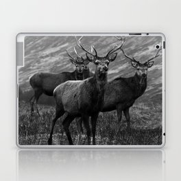 The four stags on the loch b/w Laptop & iPad Skin