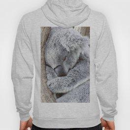Sleeping Koala Hoody