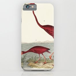 a handcolored wood ibis and scarlet flamingo iPhone Case