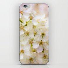 Spring Crowd iPhone & iPod Skin