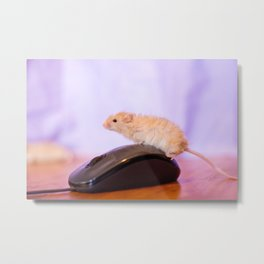 Mouse on a Mouse Metal Print
