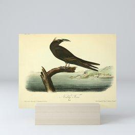 Noddy Tern9 Mini Art Print