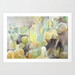 Arizona Cacti Botanical Garden Art Print