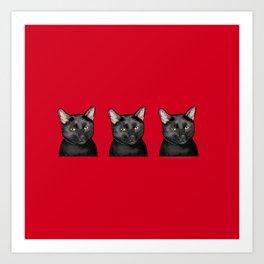 Three Black Cats on Red Art Print
