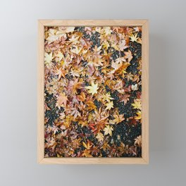 Fall Leaves Framed Mini Art Print