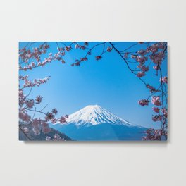 Mount Fuji in spring Metal Print