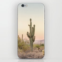 Arizona Desert iPhone Skin