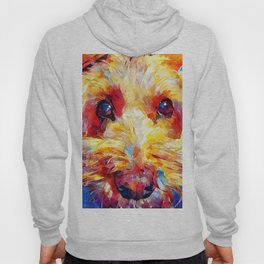 Schnoodle Hoody