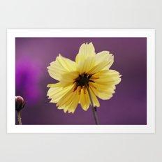 Yellow solitaire 52 Art Print