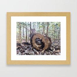 Perspectives Framed Art Print
