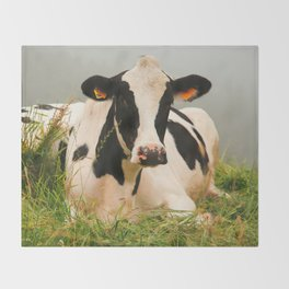 Holstein cow facing camera Throw Blanket