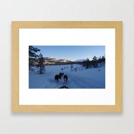 Dog sledging in Scandinavia Framed Art Print