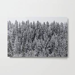 All I Ever Need Metal Print