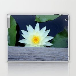 White Water Lily Under the Bridge Laptop & iPad Skin