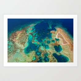 Colours of the Reef Art Print