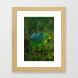 Parrot Toadstool Framed Art Print