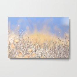 Mediterranean vegetation on Mallorca during summer Metal Print