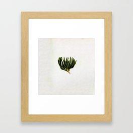 Botanical Moss Framed Art Print