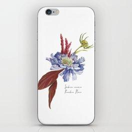 Blue Scabiosa Flower iPhone Skin