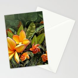 Hawaiian Plumeria at First Light Stationery Cards