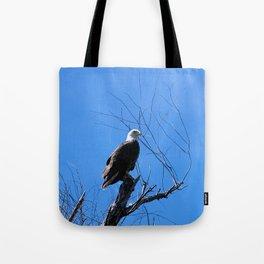 Clear Sight (Bald Eagle) Tote Bag