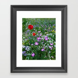 Wild Flower Meadow Framed Art Print