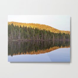 Fall Forest Reflected Metal Print