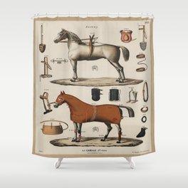 Jockey Horse Equipment Outfit Vintage Scientific Encyclopedia Illustration Shower Curtain