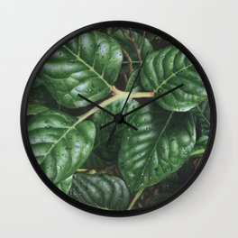 can you be-leaf- it Wall Clock