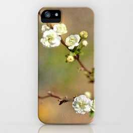 Small Kindnesses iPhone Case