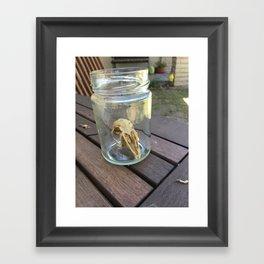 Juvenile Rabbit Framed Art Print