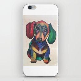 Rainbow Pup iPhone Skin
