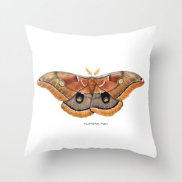 Polyphemus Moth (Antheraea polyphemus) II Throw Pillow