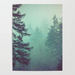 Forest Fog Fir Trees Poster