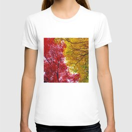 Red and Yellow T-shirt